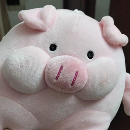 吃不起猪肉