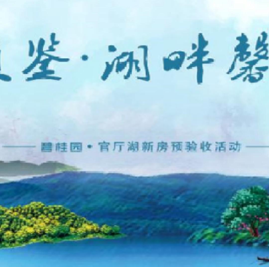 碧桂园官厅湖直播封面