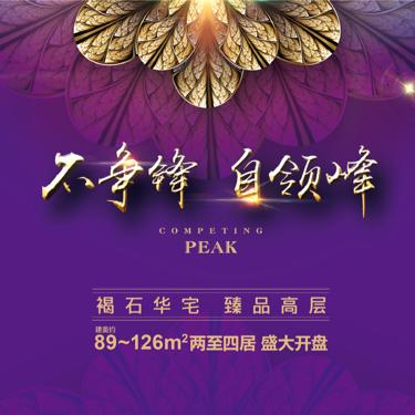 国兴融泰城直播封面