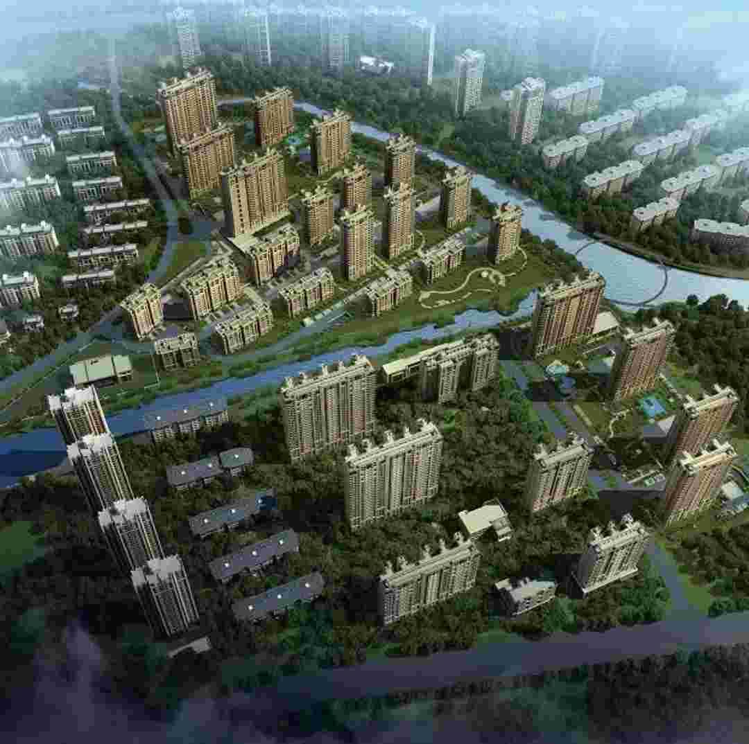 大运河孔雀城直播封面