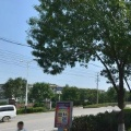 沧州炼油厂石化家属区