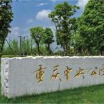 中粮中央公园祥云
