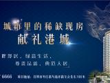 北京路住宅区G地块资讯配图