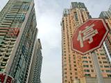 中南林樾资讯配图