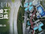 东营碧桂园云顶资讯配图