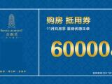 郑和国际金融湾资讯配图