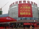 郴州大汉新商业生态城资讯配图