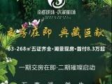 南都明珠•滨湖新城资讯配图