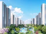 华侨城·曦海岸资讯配图