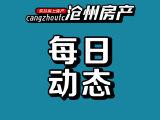 沧州石榴玉兰湾资讯配图