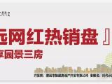 时代香海彼岸资讯配图