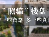 大名城紫金九号资讯配图