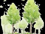 绿地花都国际资讯配图