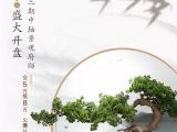 裕升·大唐华府资讯配图