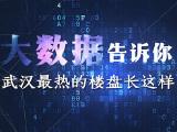 保利新武昌资讯配图