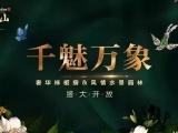 万象江山资讯配图