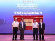 碧桂园进军现代农业  率先助力第三代杂交水稻发展