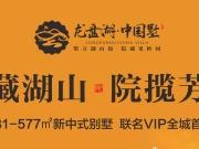 龙盘湖·中国墅丨VIP耀世首发,引爆全城