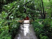 大揭秘!秦皇岛中冶德贤公馆的四大造园观