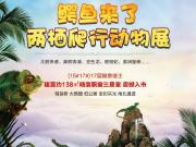 滨州秦皇丽景:大鳄来袭!滨州首届两栖爬行动物展来了!