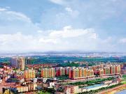 茶山经济发展注入新活力 镇上置业1.3万起
