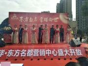 鸿洋东方名都11月3日营销中心荣耀开放