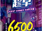 双十一 疯狂抢购价| 毛坯6500元/m2起 抢驻红星天铂