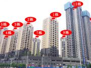 工程进度丨福城美高梅广场