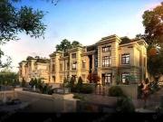 巴黎一號二期盛大开盘 当日加推48套宽境庭院别墅