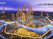 是谁誉冠全城?中南·布拉格3小时7亿的热销解密