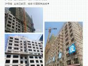 5月上半月施工进度组图:哈尔滨多楼盘工地谍照曝光