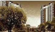 肇庆发现美院怎么样 户型分析及房价走势详情