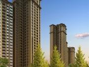 怀化鹤洲印象怎么样 买房先要看懂户型图非常国际户型好均价低