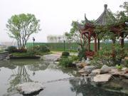 玺开东方 大境已成丨方圆·东江月岛 新中式园林示范区盛大开放