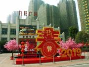 九龙广场 | 新家在成长,2月工程进度播报