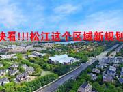 松江新城新姿态 梅家浜路至G60详控规划 松江新城界面更新