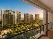 杭州2018-12-15最新数据-全市新房项目真实可售量