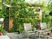 一楼有个院子,可以开发成哪些功能空间