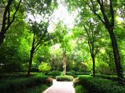 """郑州的""""天然氧吧""""小区,花落谁家?「绿化篇」"""