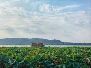 绿荫里的繁华,风景中的全玻璃BOX,滨江献给之江的最高赞礼!
