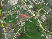 南沙黄阁两大村旧改规划出炉!总面积超170公顷