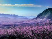 五一打卡 去京郊小瑞士,赴金海休閑嘉年華的狂歡之旅
