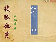 搜狐秘笈:第十三章
