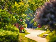 福州龙湖丨住进园林,畅享绿意生活