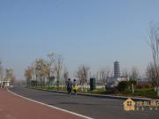 """从""""湖""""到""""公园"""",淄博这里最宜居"""