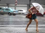 郑州一天卖出704套房源 楼市温比亚台风席卷而来!
