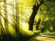 生态立区 森林城市 平谷打造全域大公园