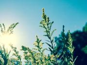 湖州摄景丨洋房慢镜头,定格花园洋房的优雅时光