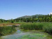 """城馨丽锦""""发现宁湖湿地之美""""摄影大赛 丰厚大奖等你来拿!"""