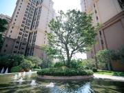 地产业务多元盛放,雅居乐2019年销售1180亿